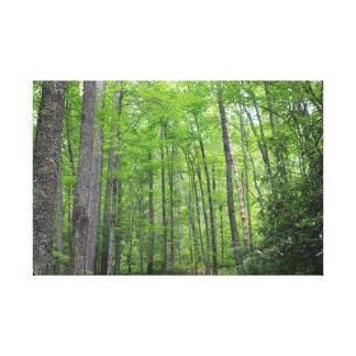 Dans la copie de toile en bois - montagnes de