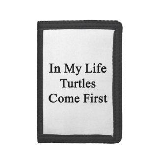 Dans ma vie les tortues viennent d'abord