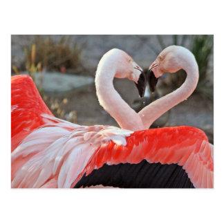 Danse de l'amour carte postale