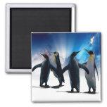 Danse de pingouins magnets pour réfrigérateur