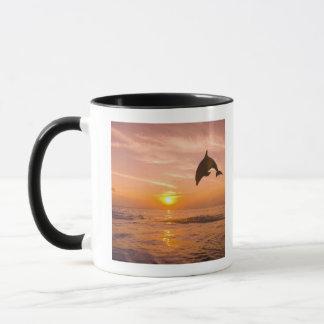 Dauphin de Bottlenose sautant 2 Mugs