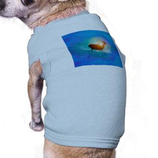 Dauphin drôle sur l'arrière - plan bleu avec le manteaux pour animaux domestiques