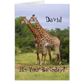 """David """"deviennent comme fous"""" carte de girafes de"""