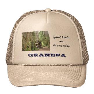 De grands papas sont promus aux casquettes de