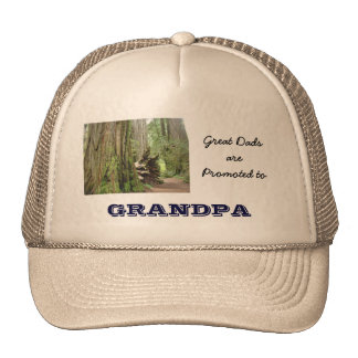 De grands papas sont promus aux chapeaux de sports casquette de camionneur