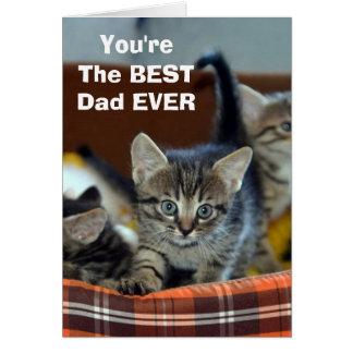 De la MEILLEURE carte de voeux de papa de chat