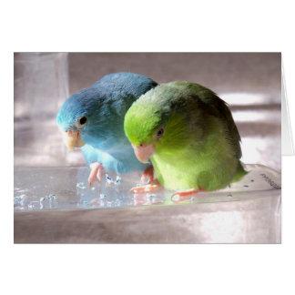 De meilleurs amis carte de voeux d'oiseaux de