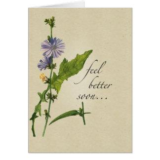 De meilleurs fleurs sauvages de sensation, ton cartes