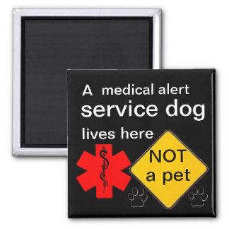 De service de chien des vies aimant vigilant
