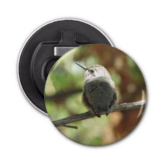 Décapsuleur Débutant de colibri