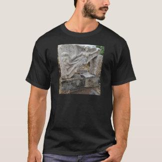 Déesse grecque Nike chez Ephesus, Turquie T-shirt