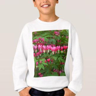 Défenseurs de la veuve et de l'orphelin nature, sweatshirt