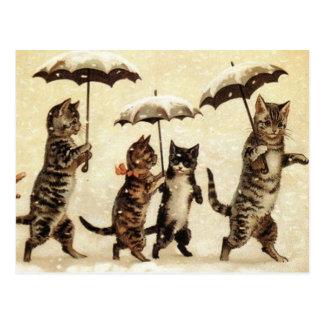 Défilé de chats carte postale
