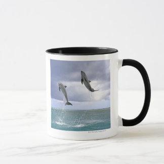 Delfin, Delphin, Tuemmler plus brut, Tursiops 2 Tasses