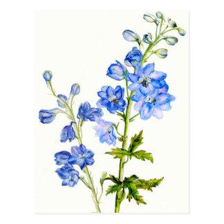 Delphiniums bleus en carte postale d aquarelle
