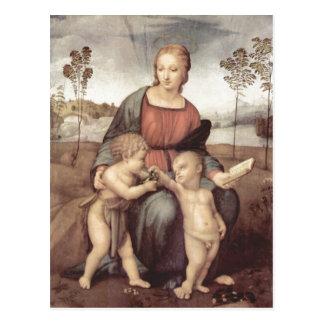 DEM Stieglitz, Szene de MIT de Raffael Madonna : M Cartes Postales