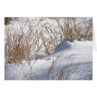 Dérive de neige/carte de mauvaises herbes