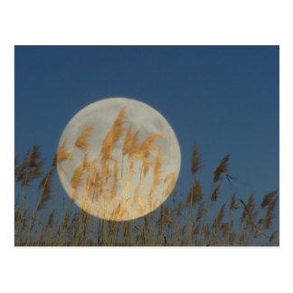 Derrière - la pleine lune derrière le collage cartes postales