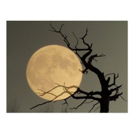 Derrière - la pleine lune derrière le collage nu d cartes postales