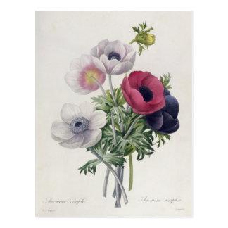 'DES de Les Choix plus des belles Fleurs Carte Postale