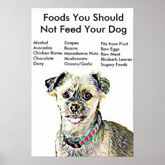 Des nourritures vous ne devriez pas alimenter posters