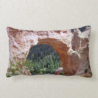 Désert rouge de canyon de voûte de roche de l'Utah Oreiller