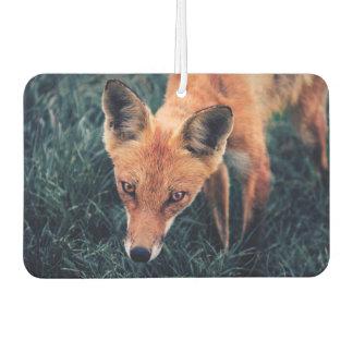 Désodorisant Pour Voiture Le Fox rouge