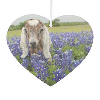 Désodorisant Pour Voiture Parfum d'ambiance de chèvre de bébé