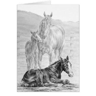 Dessin de cheval de jument et de poulain par le carte de vœux