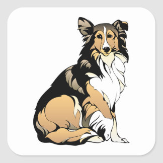 Dessin de chien de colley sticker carré