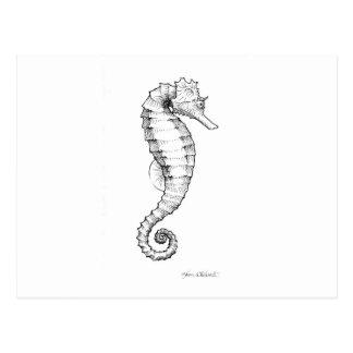 Dessin noir et blanc d'hippocampe carte postale