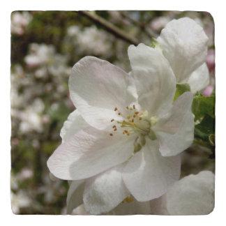 Dessous-de-plat Apple fleurissent le trépied en pierre
