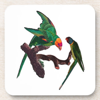 Dessous-de-verre Baie de perroquets