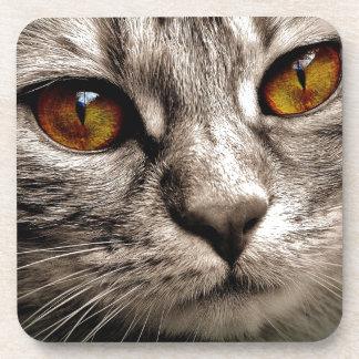 Dessous-de-verre Boisson grise observée par Brown adorable de chat