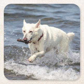 Dessous-de-verre Carré En Papier Allemand blanc Shepard sur le lac George