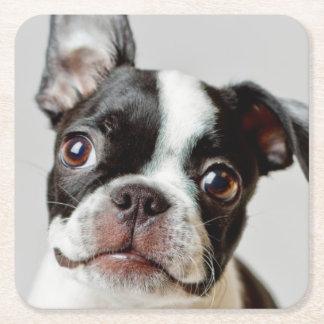 Dessous-de-verre Carré En Papier Boston Terrier