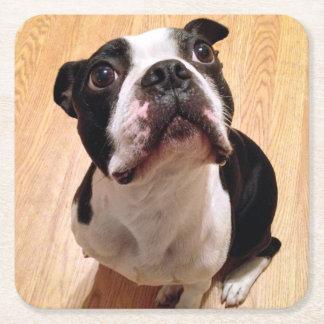 Dessous-de-verre Carré En Papier Chien de Boston Terrier