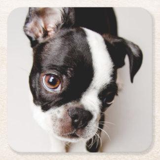 Dessous-de-verre Carré En Papier Chiot d'Edison Boston Terrier