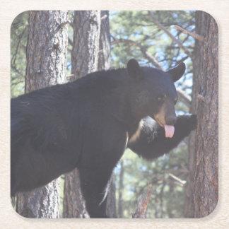 Dessous-de-verre Carré En Papier Dessous de verre de boissons d'ours noir