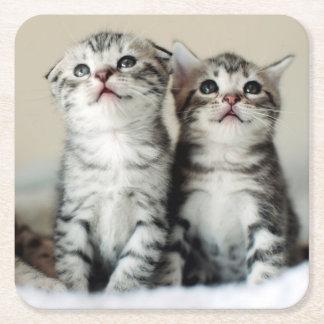 Dessous-de-verre Carré En Papier Deux chatons mignons