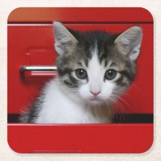 Dessous-de-verre Carré En Papier Jeter un coup d'oeil de chaton