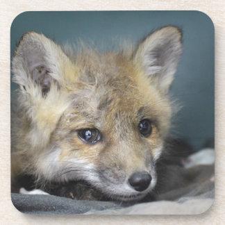 Dessous-de-verre Cas de téléphone de Fox