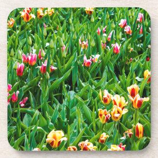 Dessous-de-verre Champ avec les tulipes roses et jaunes