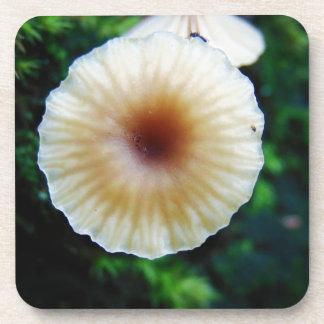 Dessous-de-verre Champignon minuscule