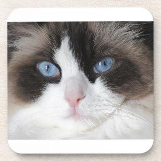 Dessous-de-verre Chat observé par bleu chéri