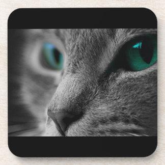 Dessous-de-verre Chat poilu gris aux yeux verts