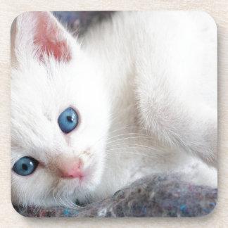 Dessous-de-verre chaton