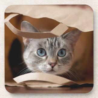 Dessous-de-verre Chaton dans le sac d'épicerie