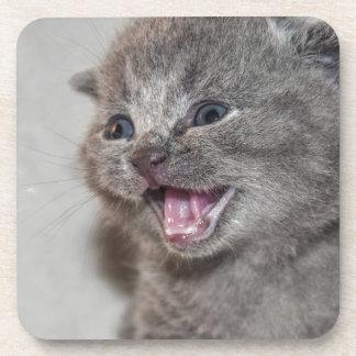 Dessous-de-verre Chaton de gris de Miaowing