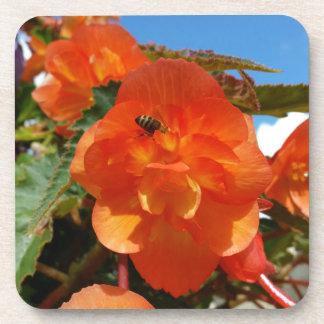 Dessous-de-verre ciel, fleurs et abeille
